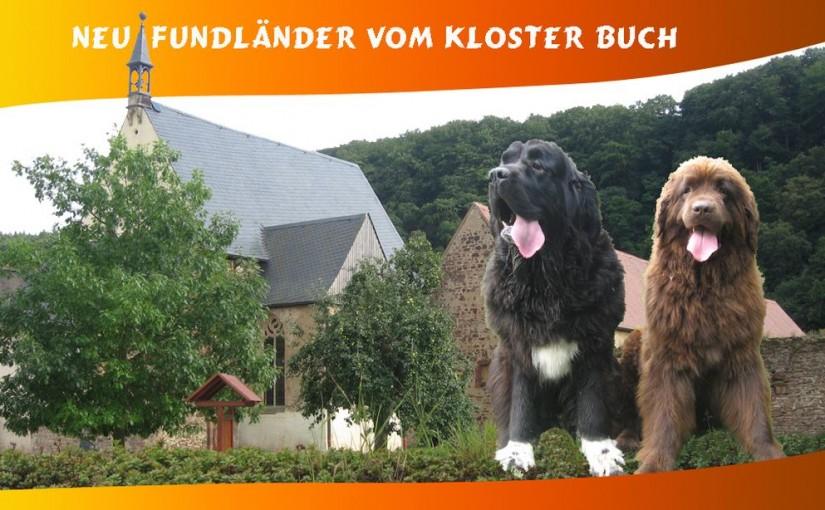 www neufundlaender-kloster-buch de