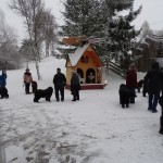 Ausschau nach den Weihnachtsfiguren von Bernd Kind